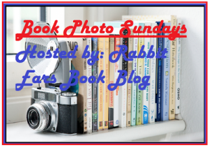 book-photo-sundays-logo