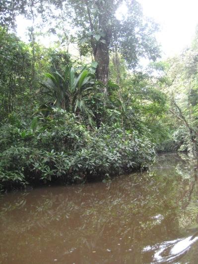 Costa Rica 168