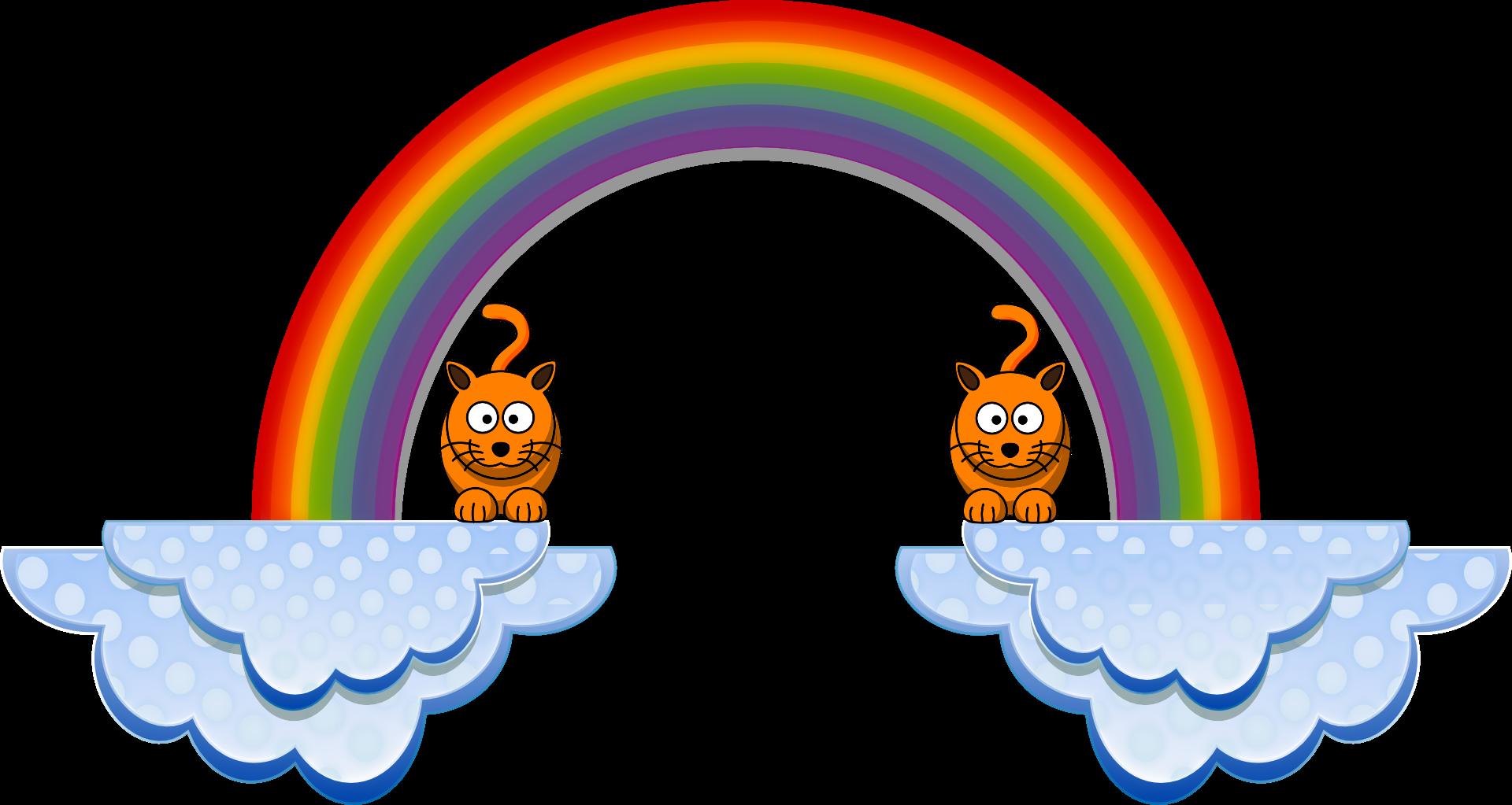rainbow kittie