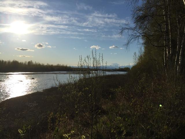 Alaska 2015 137