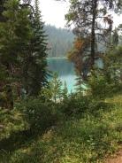 Hiking near Jasper