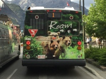 Even the buses are cute in Banff.