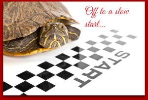 slow start3
