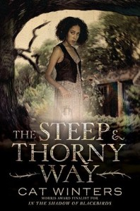 Steep & Thorny Way